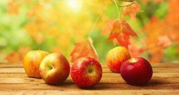 Заготовка яблок на зиму