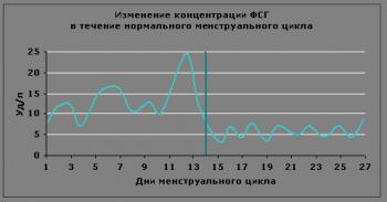 Концентрация ФСГ-гормона в течение цикла