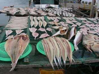 Лежит разделанная рыба