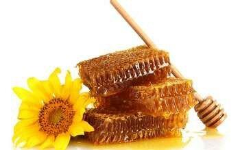 Соты с медом и подсолнух