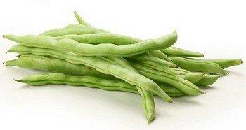 Бобовое растение фасоль