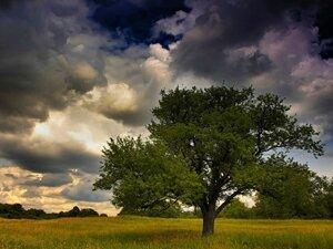 Смена погоды