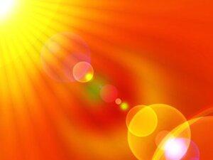 Вред прямых солнечных лучей для каллы
