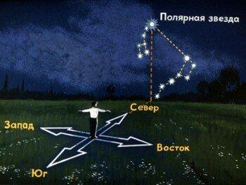 Расположение Малой Медведицы относительно сторон света