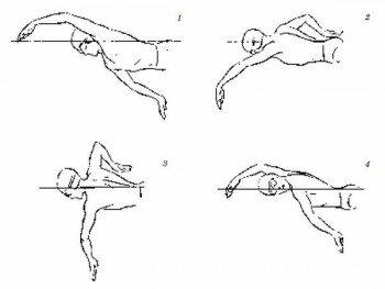 Схема грибков руками при кроле