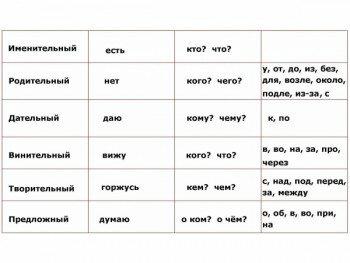 Падежи в русском языке