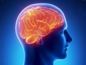 Опухоль гипофиза - противопоказание к приему Мотилиума
